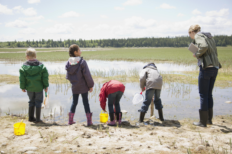 Kids in a wetland