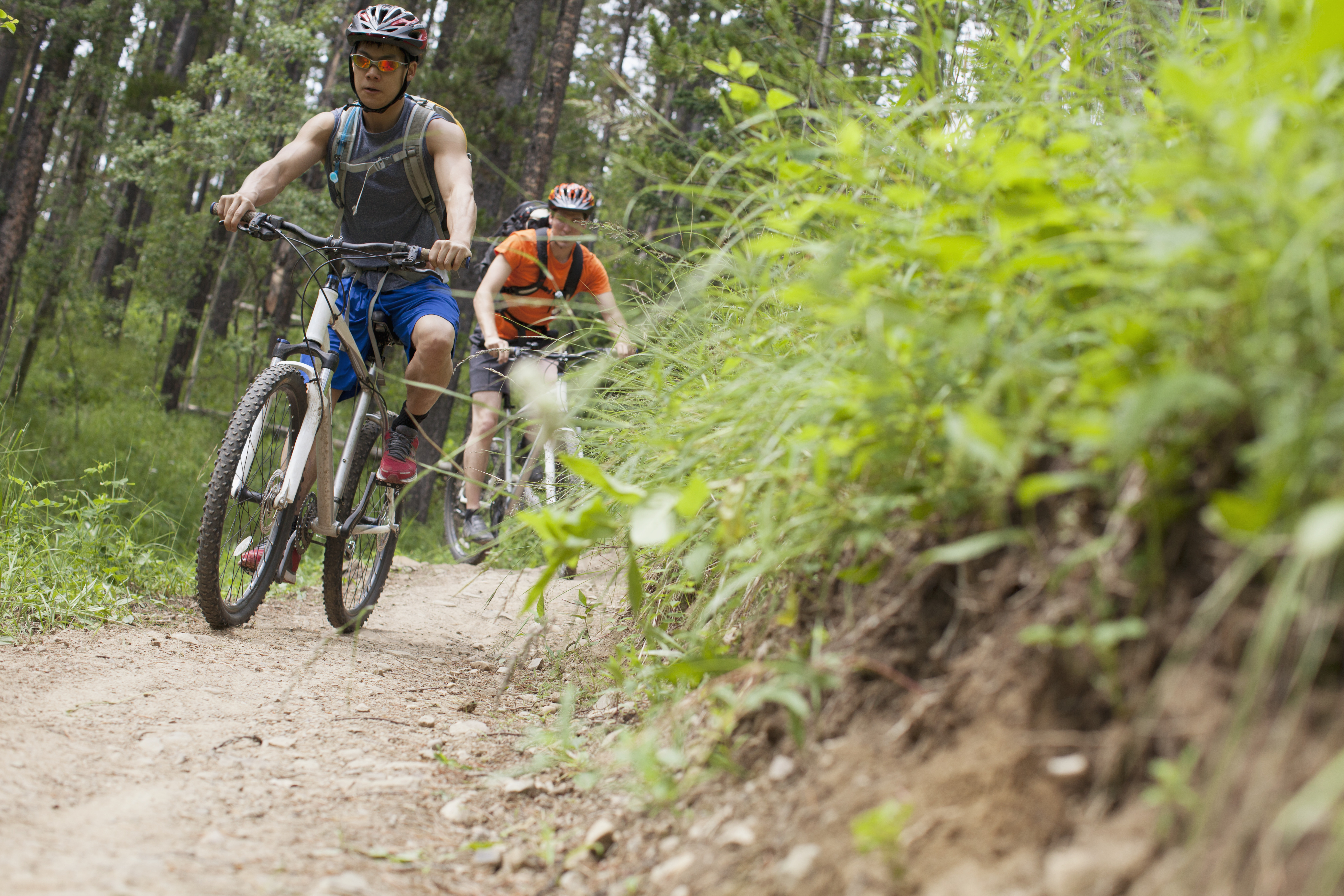 two mountain bikers on a trail