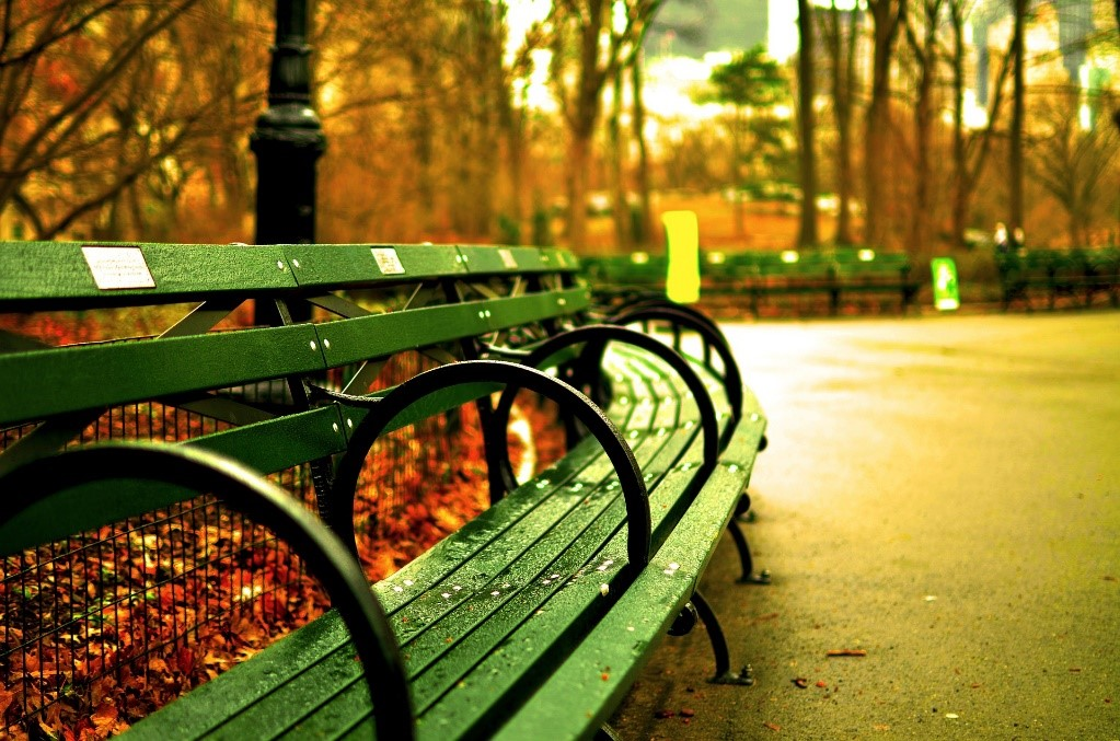 A lonely park bench somewhere