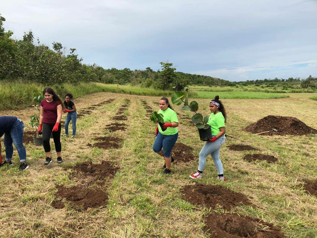Para La Naturaleza creates opportunities for Boys & Girls Clubs of Puerto Rico youth to connect with nature and to actively engage in reforestation efforts. Image courtesy of Para La Naturaleza.